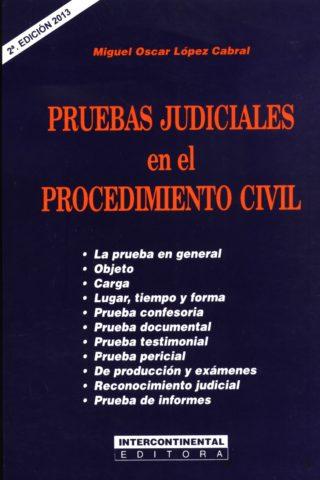 PRUEBAS JUDICIALES EN EL PROCEDIMIENTO CIVIL